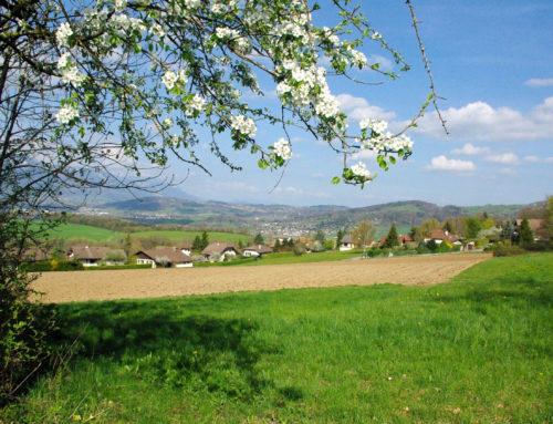 Terrain à la vente Savoie et Haute-Savoie – Achat terrain